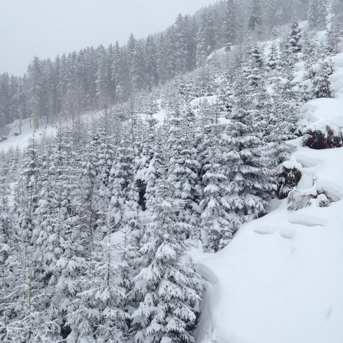 Op wintersport naar Mayrhofen! -13
