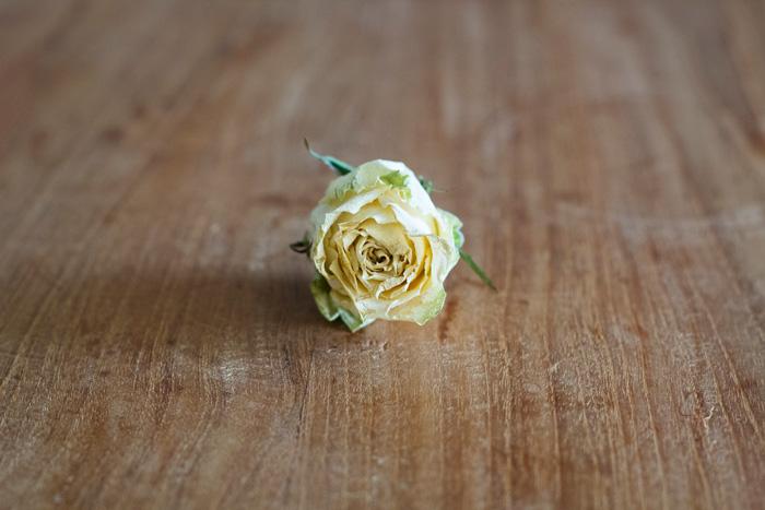Hoe kan je bloemen drogen?