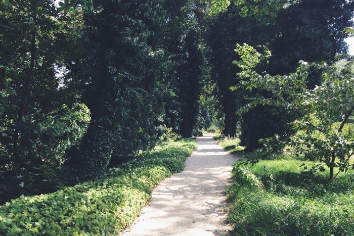 De botanische tuinen van rotterdam wish flower for De tuinen rotterdam