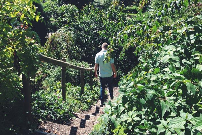 Botanische Tuin Rotterdam : De botanische tuinen van rotterdam wish flower