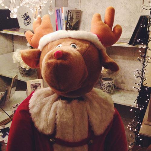 Kerst Diary Wat ik gedaan heb met Kerst