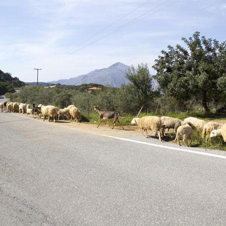 Avontuur; Rijden door de bergen van Kreta