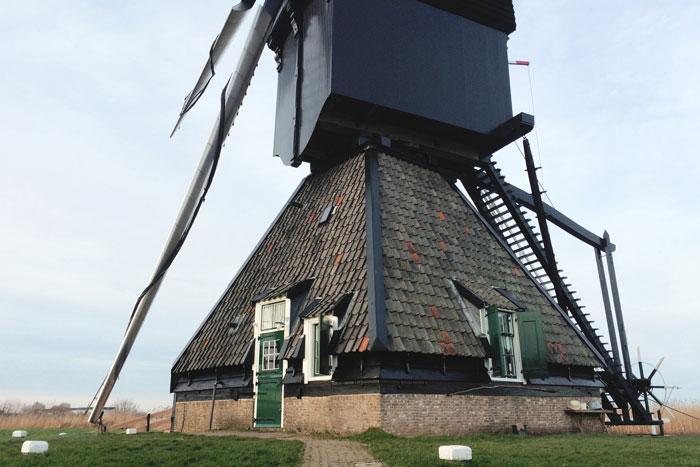 Een dagje naar de molens van Kinderdijk