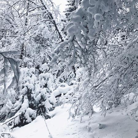 Van Mayrhofen naar Finkenberg wandelen